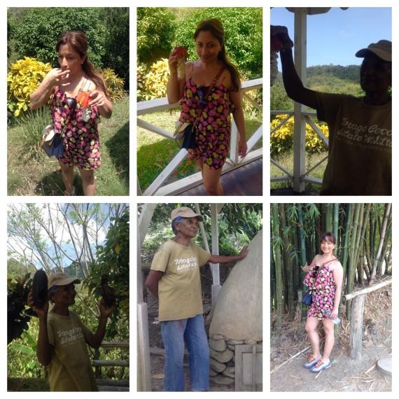 cocoa plantation xtina
